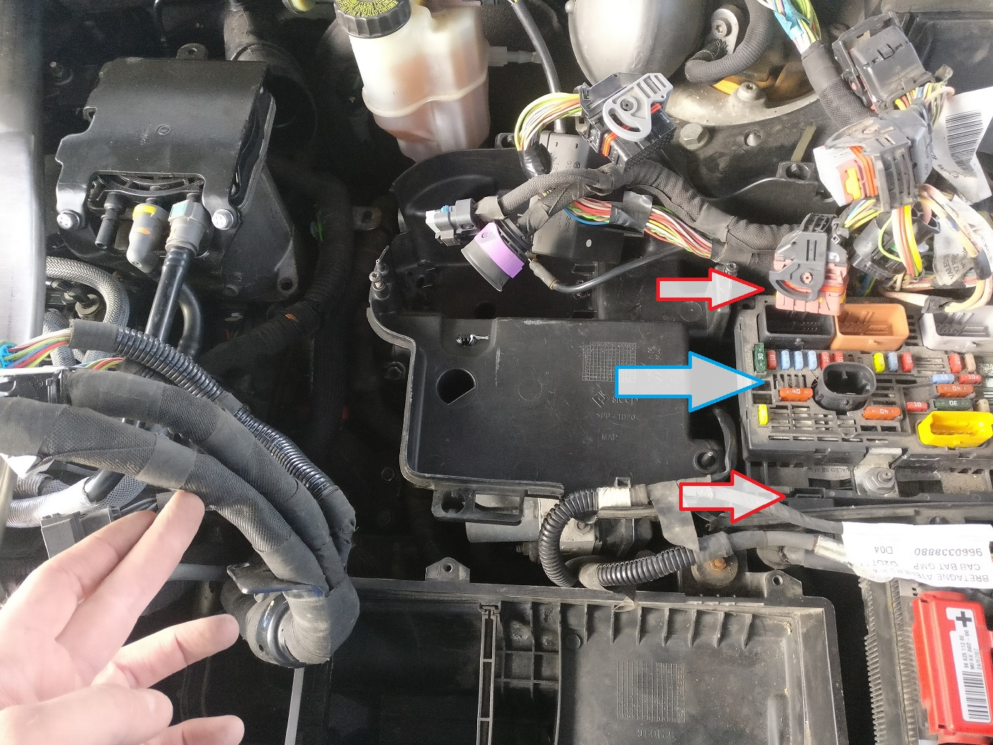 7. Now you can see the STARTER MOTOR. Disconnect WIRING from the fuel  filter and remove the MOUNT for the electric harness, fastened with two  Torx screws.